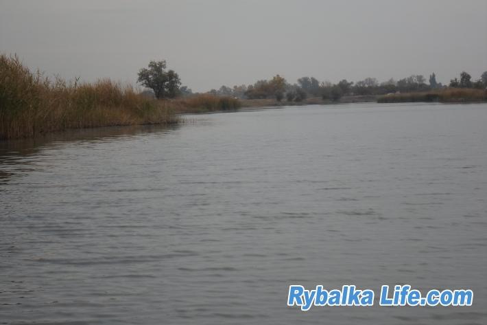http://rybalkalife.com/uploads/images/00/01/21/2019/09/30/79c7b4.jpg