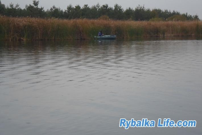 http://rybalkalife.com/uploads/images/00/01/21/2019/09/30/88f071.jpg