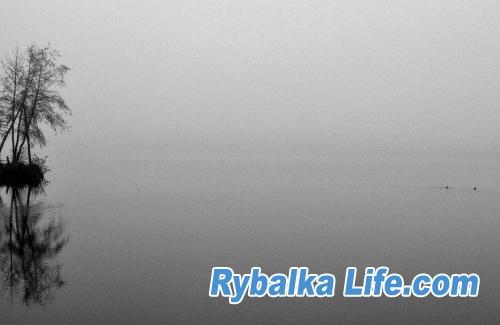 Туман на основе